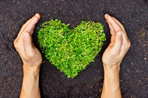 Invoice finance is a simple way to help your business go green.