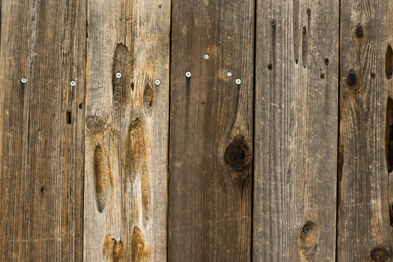 Splinters, nails and mould are all potential dangers when using wooden pallets.