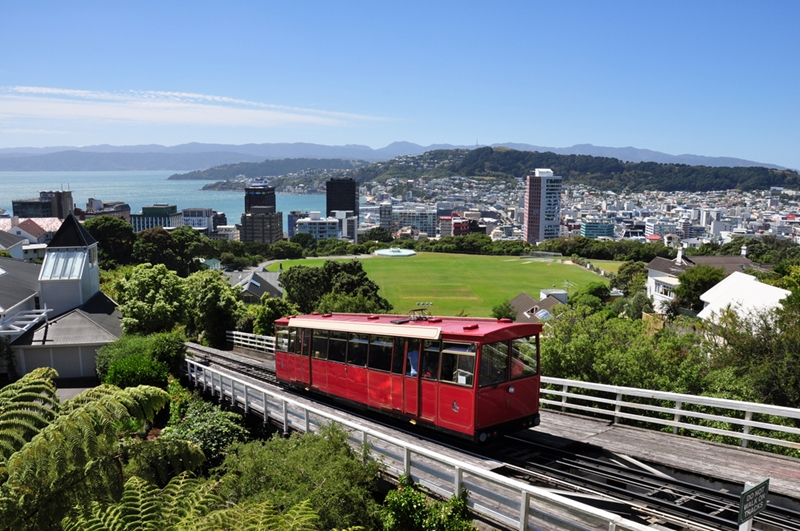 It may not be this sunny on your trip, but the cable car can take you to one of Wellington's top rainy spots.