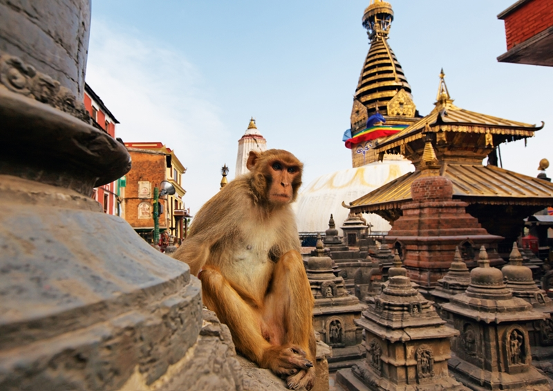 Do you know which way to walk around a Nepalese temple?