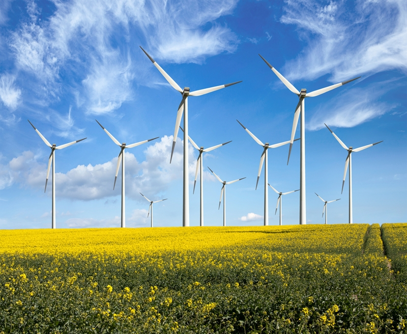 Wind farming remains a highly popular choice for supplying energy to the country.