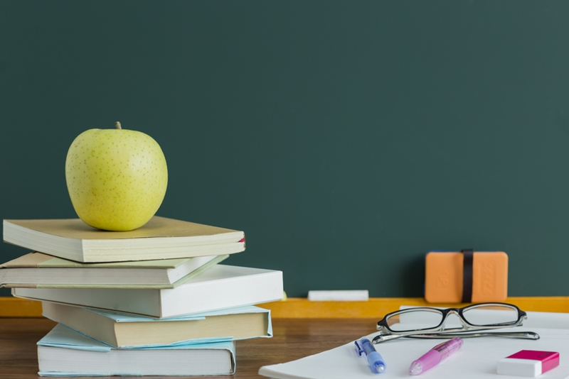 Are there good schools in or around the suburb?