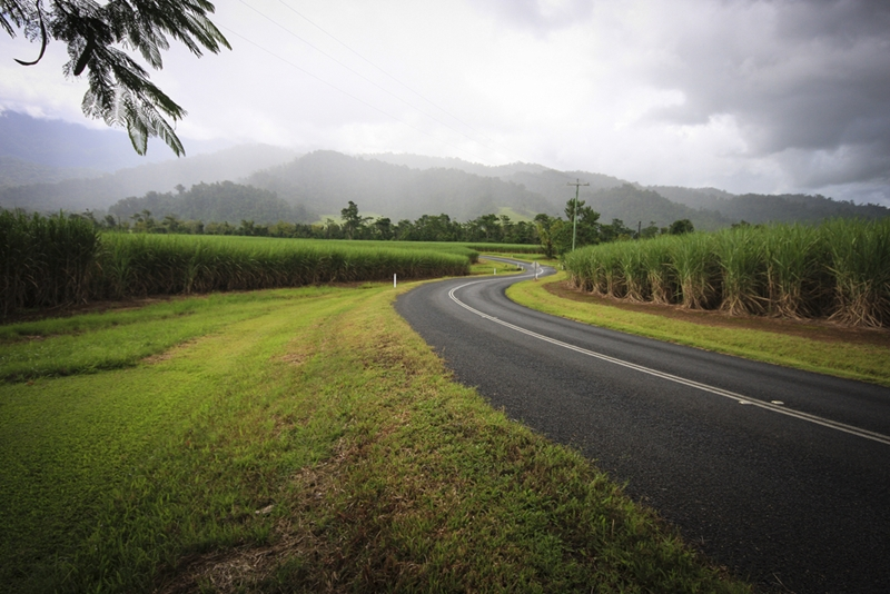 Rainfall on rural roads can make for dangerous driving conditions.