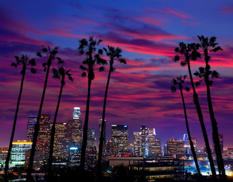LA is showcased as a key investment opportunity.