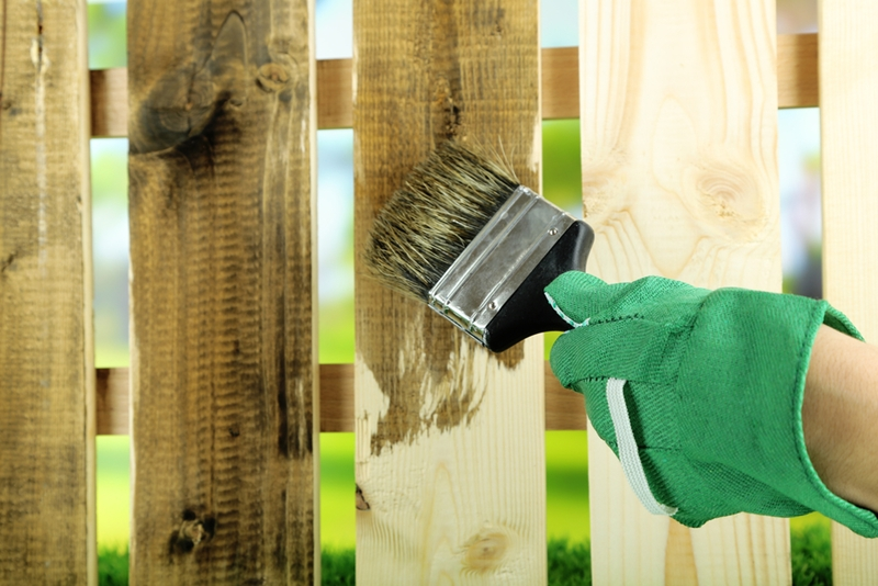 Painting your garden fence will improve the aesthetics of your garden.