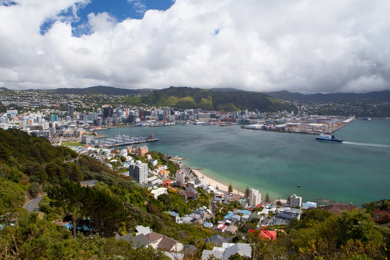 Wellington offers a high quality of life and numerous opportunities in the IT and digital tech sectors.