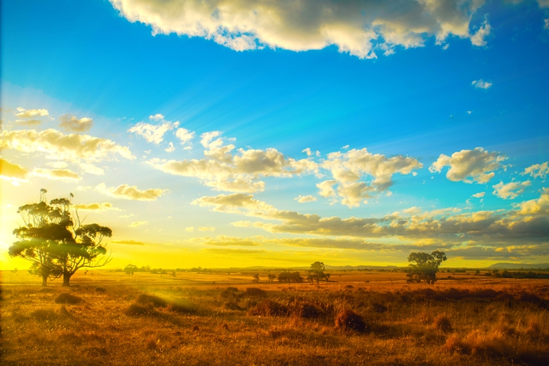 Will Australia continue to grow its solar potential?