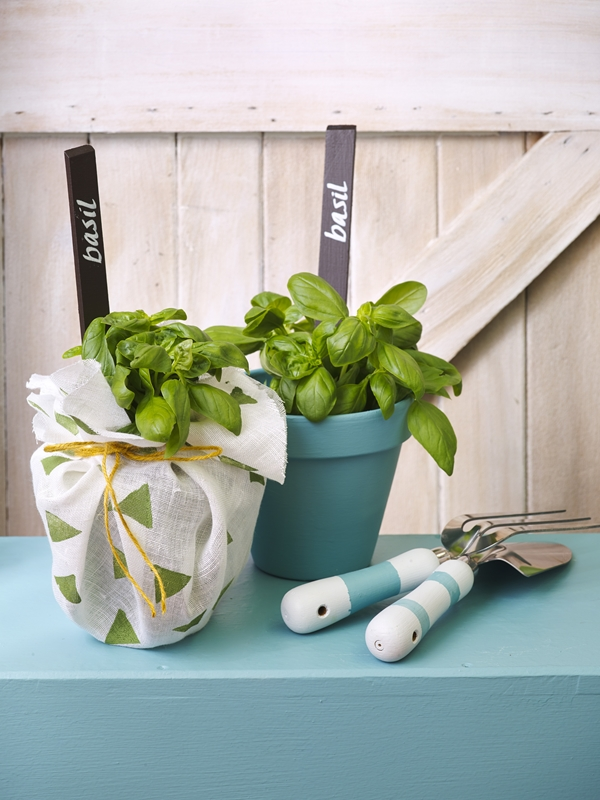 Painted pots for pot plants can liven up a space!