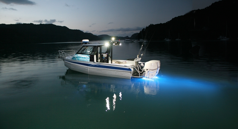 Night-fishing can be relaxing and safe with the right lighting installed on your vessel.