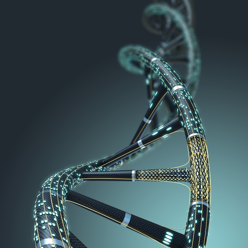 Is leadership in your DNA?