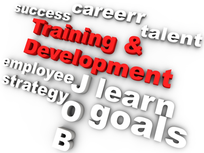 Employees want to work for businesses that invest in their development.