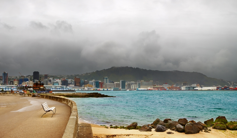 Head to Wellington's waterfront to visit Te Papa on a rainy day,