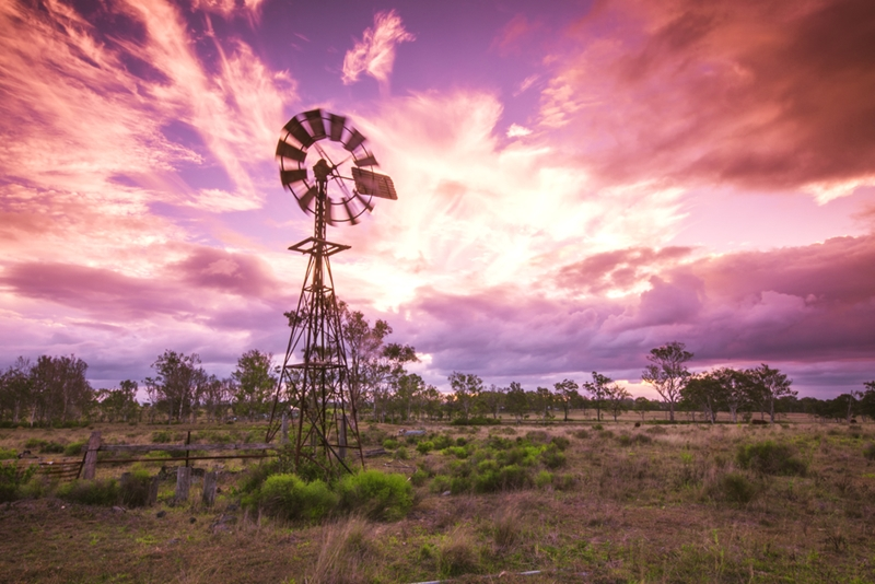 A drought-impacted Australian farm, without adequate drought insurance.