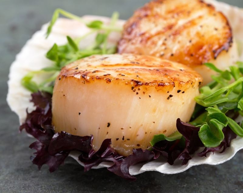Indulge in some scallops in New Zealand.