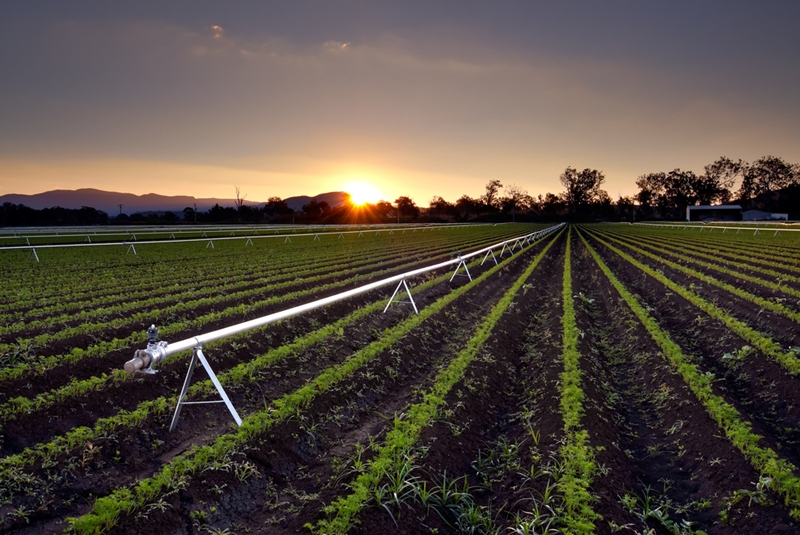 Make sure your farmland is comprehensively covered.