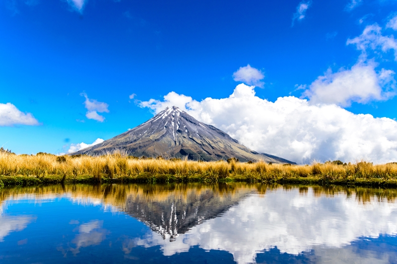 If you're visiting beautiful New Zealand, make sure you have insurance.