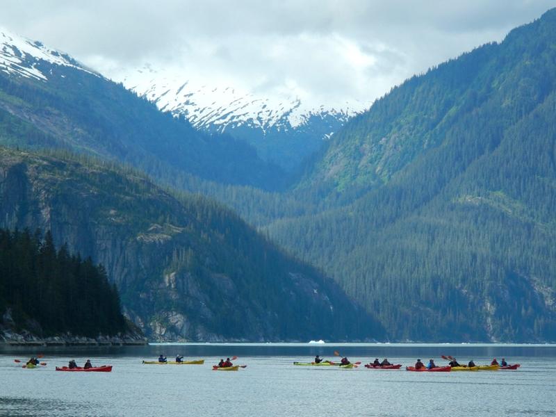 Kayaking through Endicott Arm