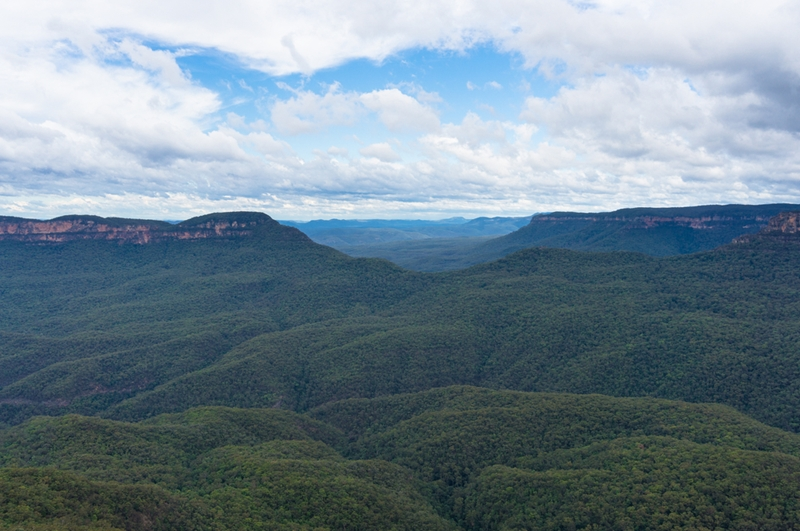 Blue Mountains National Park, NSW.