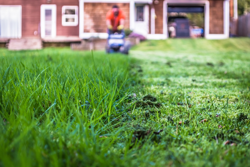 An unkempt lawn can be a sign of an empty house - ask a friend if they can keep yours maintained.