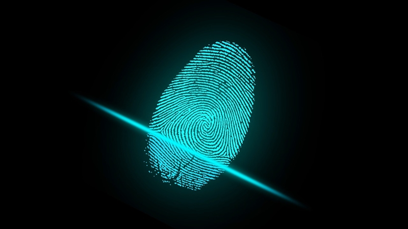 Fingerprint scanners are a common form of biometric authentication