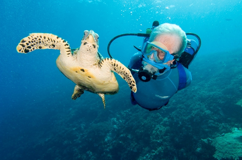 Enjoy scuba diving at the Jean-Michel Cousteau Resort.